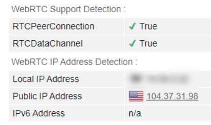 WebRTC leak test US server