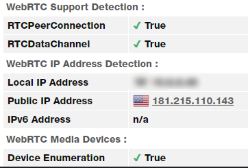 WebRTC leak test using the US server