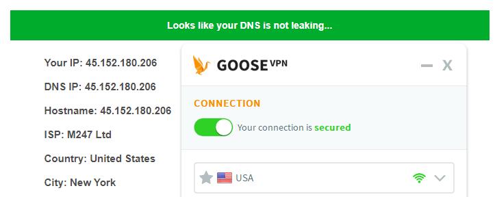 DNS leak test US server Goose VPN