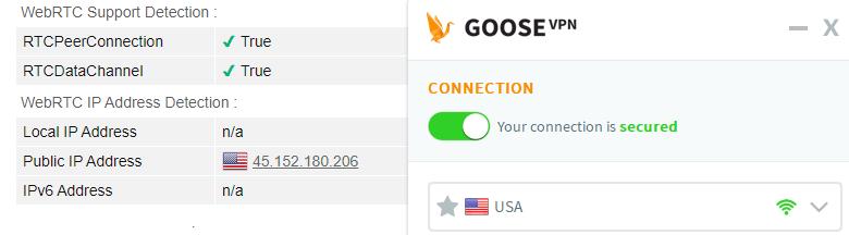WebRTC leak test US server Goose VPN